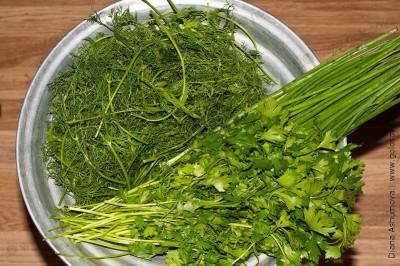 петрушка, укроп, зеленый лук
