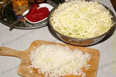 нашинкованная капуста для тушения, лук и томатная паста