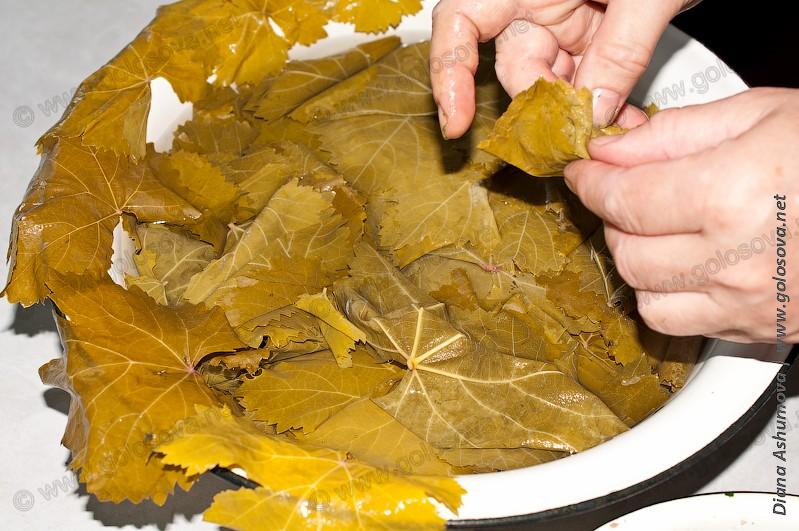 голубцы из виноградных листьев рецепт с фото