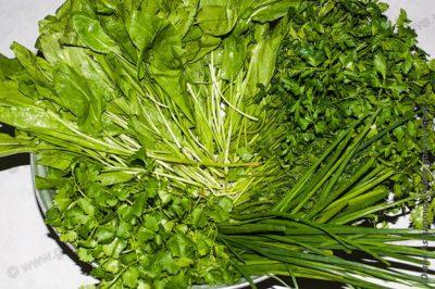 чистая зелень: петрушка, укроп, кинза, зеленый лук и щавель