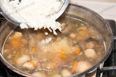 грибной суп из шампиньонов с рисом