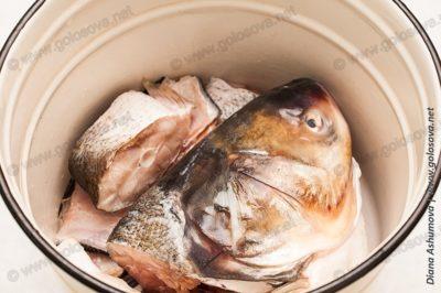 рыбный набор для ухи
