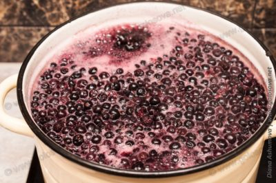 сколько варить компот из черной смородины