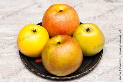 яблоки на шарлотку